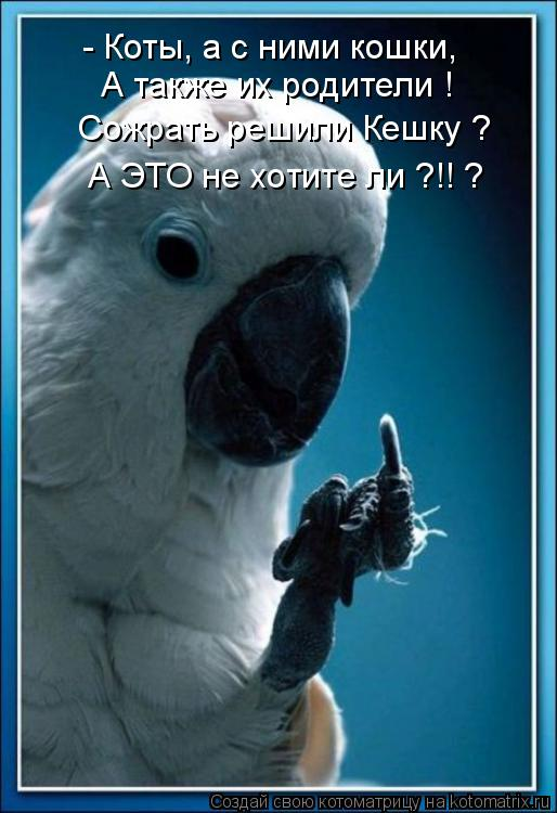 http://kotomatrix.ru/images/lolz/2011/01/24/802003.jpg