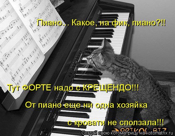 Котоматрица: Пиано... Какое, на фик, пиано?!!  Тут ФОРТЕ надо с КРЕЩЕНДО!!!  От пиано еще ни одна хозяйка  с кровати не сползала!!!