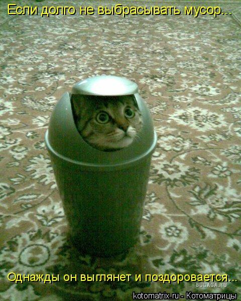 Если долго не выбрасывать мусор... Однажды он выглянет и поздоровается