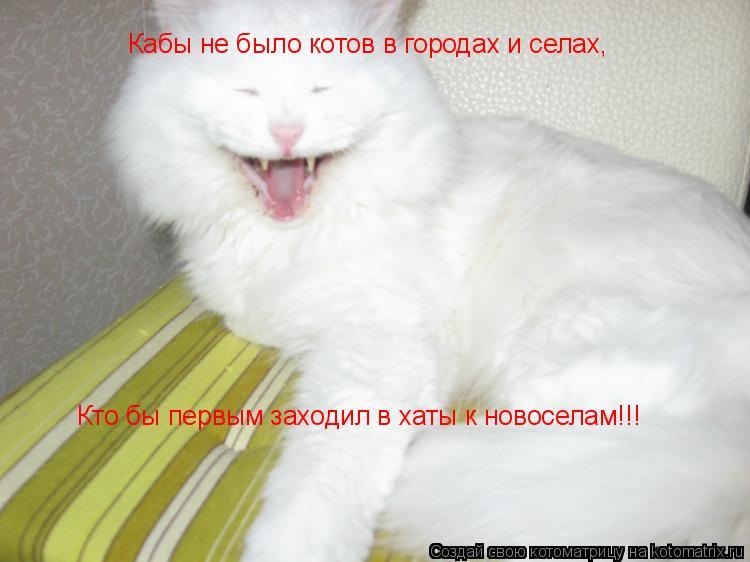 Кабы не было котов в городах и селах, Кто бы первым заходил в хаты к н