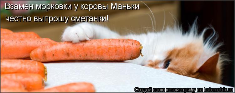 Взамен морковки у коровы Маньки  честно выпрошу сметанки!