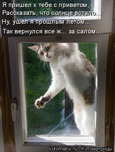http://kotomatrix.ru/images/lolz/2011/01/27/804220.jpg