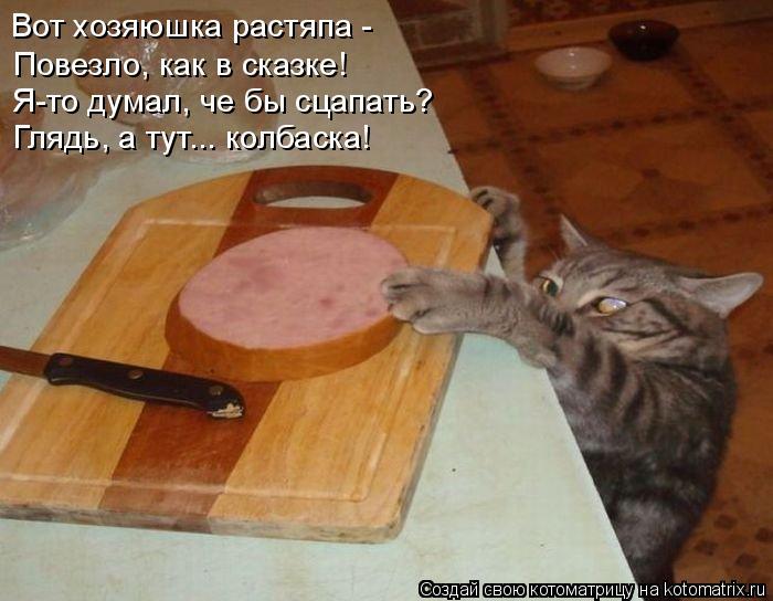 Котоматрица: Вот хозяюшка растяпа - Повезло, как в сказке! Я-то думал, че бы сцапать? Глядь, а тут... колбаска!