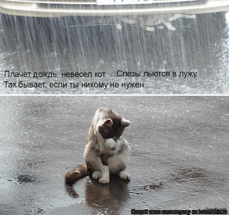 Плачет дождь, невесел кот... Слезы льются в лужу. Так бывает, если ты