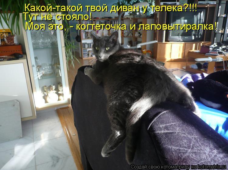 Котоматрица: Какой-такой твой диван у телека?!!! Тут не стояло!   Моя это, - когтеточка и лаповытиралка!