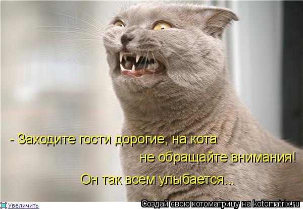 Котоматрица: - Заходите гости дорогие, на кота  не обращайте внимания! Он так всем улыбается...