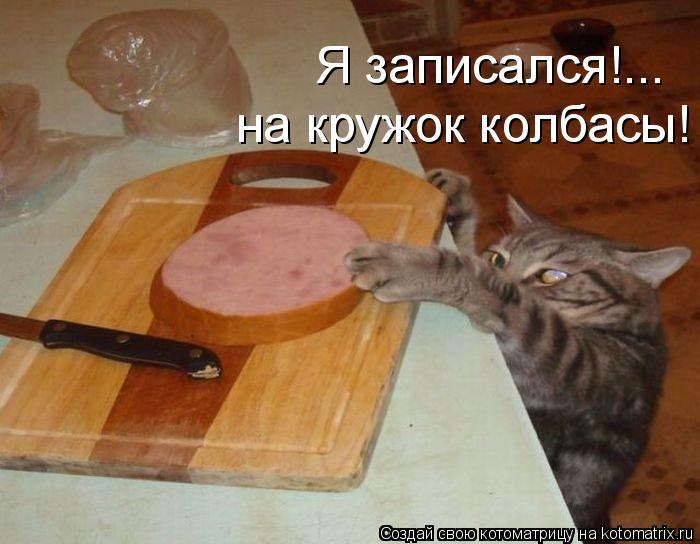 Котоматрица: Я записался!...  на кружок колбасы!