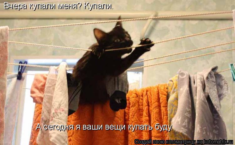 Котоматрица: Вчера купали меня? Купали. А сегодня я ваши вещи купать буду.