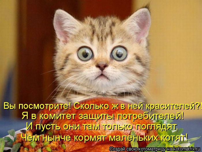 Котоматрица: Я в комитет защиты потребителей! И пусть они там только поглядят, Чем нынче кормят маленьких котят! Вы посмотрите! Сколько ж в ней красителе