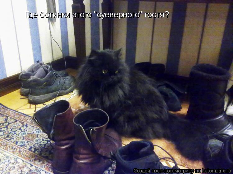 """Котоматрица: Где ботинки этого """"суеверного"""" гостя?"""