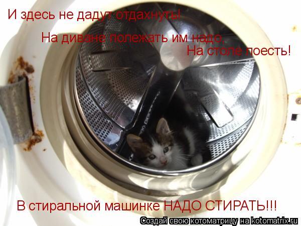 Котоматрица: И здесь не дадут отдахнуть! На диване полежать им надо, На столе поесть! В стиральной машинке НАДО СТИРАТЬ!!!