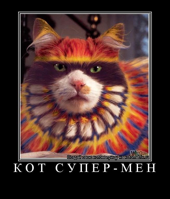 Котоматрица: Кот супер-мен