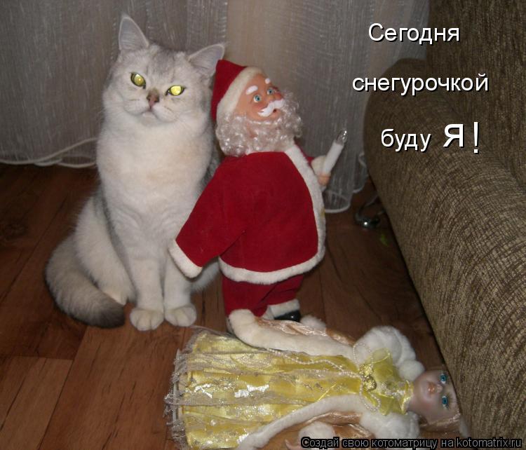 Котоматрица: Сегодня снегурочкой я ! буду