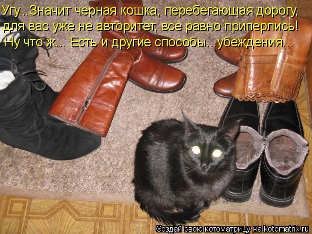 Угу...Значит черная кошка, перебегающая дорогу, для вас уже не авторит