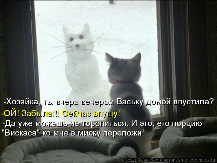 -Хозяйка, ты вчера вечером Ваську домой впустила? -ОЙ! Забыла!!! Сейча