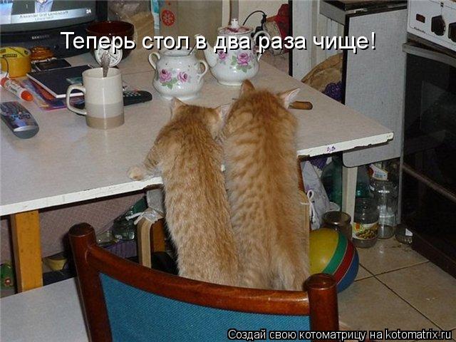 Котоматрица: Теперь стол в два раза чище!