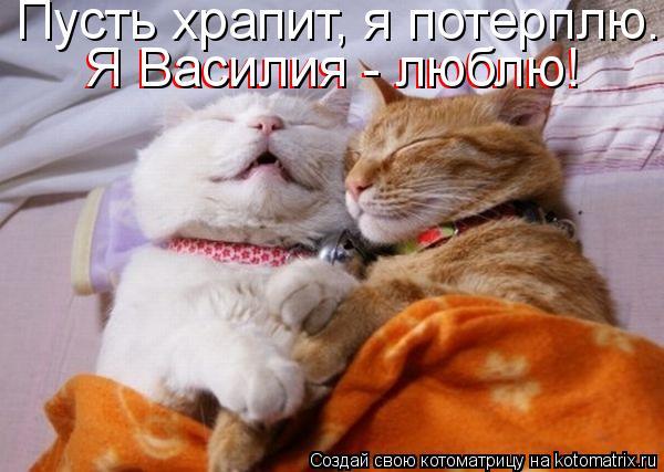 Пусть храпит, я потерплю. Я Василия - люблю! Я Василия - люблю!