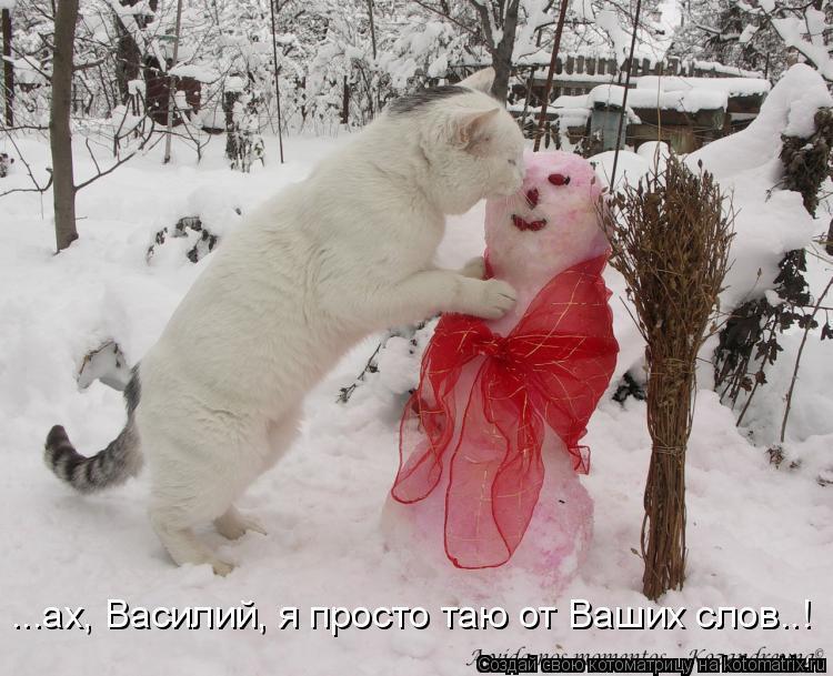 Котоматрица: ...ах, Василий, я просто таю от Ваших слов..!