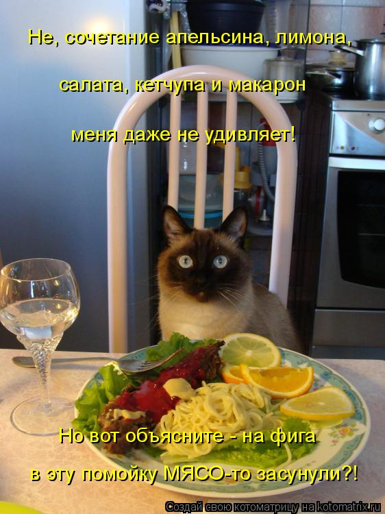 Котоматрица: Не, сочетание апельсина, лимона,  салата, кетчупа и макарон  меня даже не удивляет!  Но вот объясните - на фига  в эту помойку МЯСО-то засунули?!