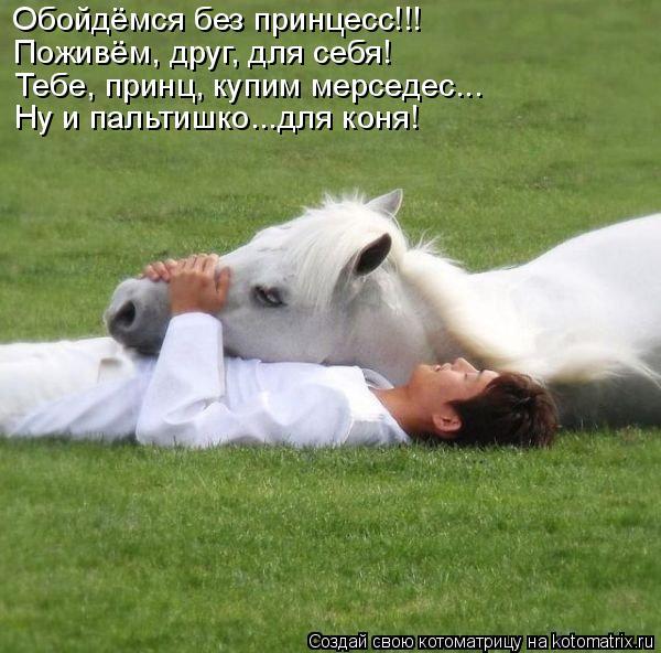 Котоматрица: Обойдёмся без принцесс!!! Поживём, друг, для себя! Тебе, принц, купим мерседес... Ну и пальтишко...для коня!