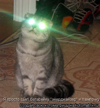"Котоматрица: Я просто сьел батарейку ""энерджайзер"" и лампочку!"