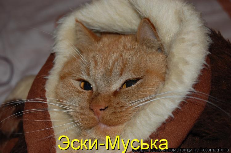 Котоматрица: Эски-Муська