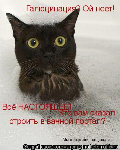 Котоматрица: Галюцинация? Ой неет! Всё НАСТОЯЩЕЕ!  Кто вам сказал строить в ванной портал? Мы не хотели, нащальнака!