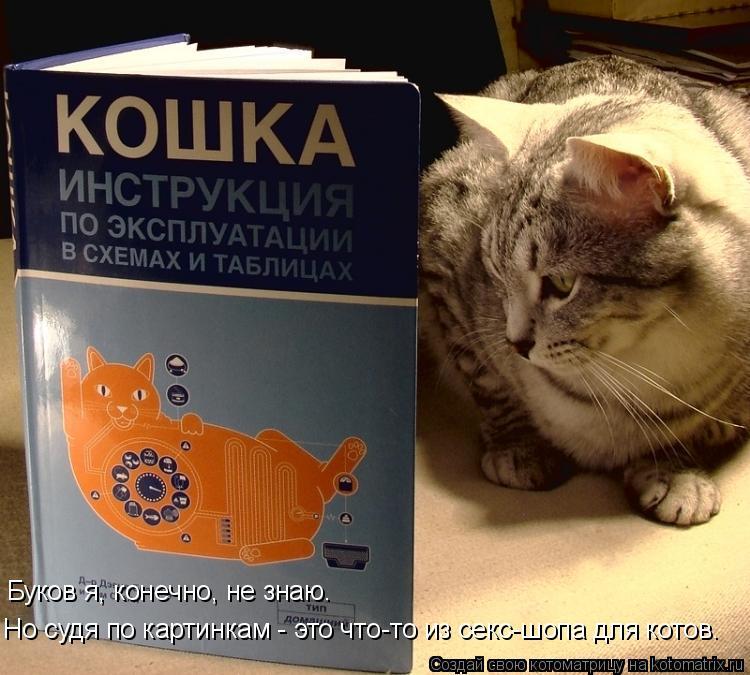 Котоматрица: Буков я, конечно, не знаю. Но судя по картинкам - это что-то из секс-шопа для котов.