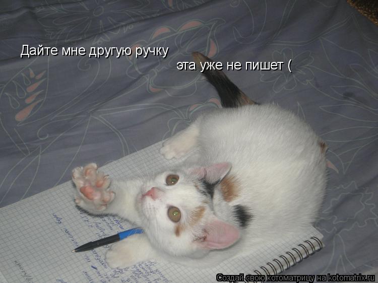 Котоматрица: Дайте мне другую ручку  эта уже не пишет (