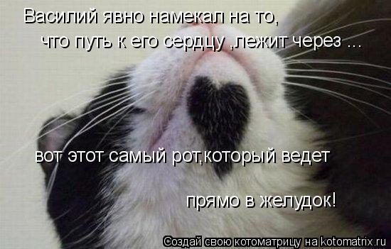 Котоматрица: Василий явно намекал на то, что путь к его сердцу ,лежит через ... вот этот самый рот,который ведет  прямо в желудок!