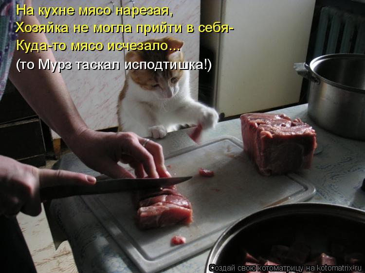 Котоматрица: На кухне мясо нарезая, Хозяйка не могла прийти в себя- Куда-то мясо исчезало... (то Мурз таскал исподтишка!)