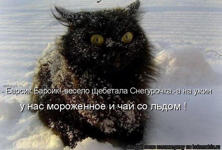 - Барсик,Барсик!-весело щебетала Снегурочка,-а на ужин у нас мороженно