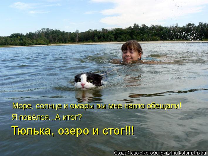 Котоматрица: Море, солнце и омары вы мне нагло обещали! Я повёлся...А итог? Тюлька, озеро и стог!!!