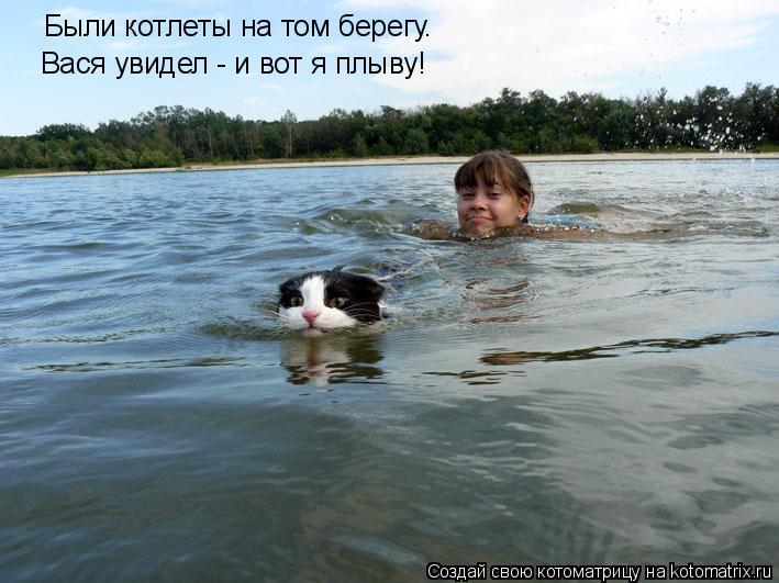 Котоматрица: Были котлеты на том берегу. Вася увидел - и вот я плыву!