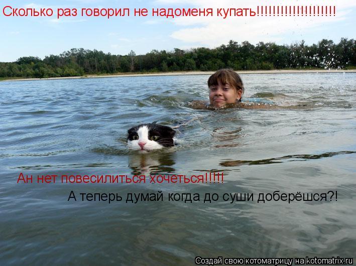 Котоматрица: Сколько раз говорил не надоменя купать!!!!!!!!!!!!!!!!!!!! Ан нет повесилиться хочеться!!!!! А теперь думай когда до суши доберёшся?!