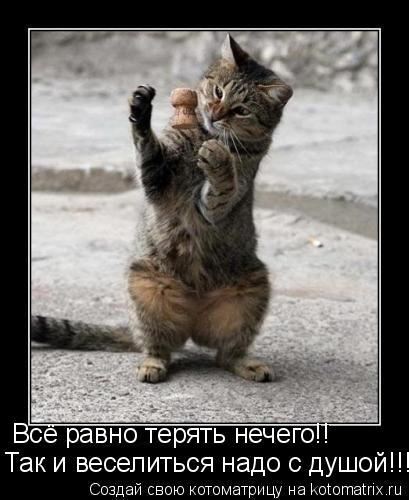Котоматрица: Всё равно терять нечего!! Так и веселиться надо с душой!!!
