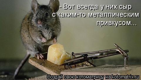Котоматрица: - Вот всегда у них сыр с каким-то металлическим привкусом...