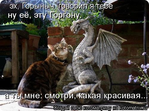 Котоматрица: эх, Горыныч, говорил я тебе ну её, эту Горгону. а ты мне: смотри, какая красивая...