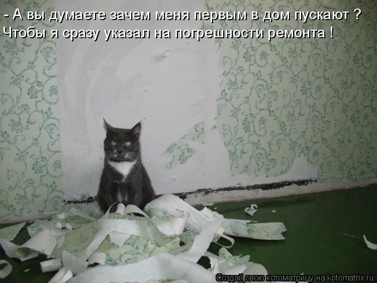 Котоматрица: - А вы думаете зачем меня первым в дом пускают ? Чтобы я сразу указал на погрешности ремонта !