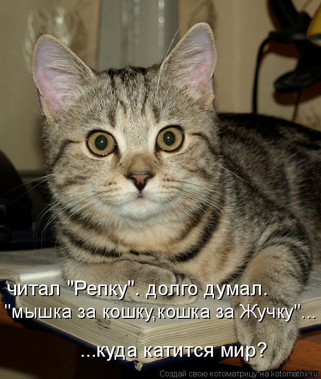 """читал """"Репку"""". долго думал. ...куда катится мир? """"мышка за кошку,кошка"""