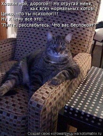 """Котоматрица: Хозяин мой, дорогой!! Ну отругай меня, как всех нормальных котов! Ценю, что ты психолог!!! Ну к чему все это: """"Лягте, расслабьтесь. Что вас беспо"""