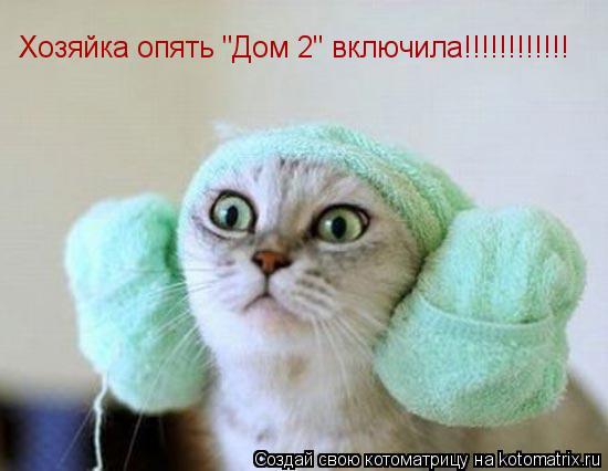 """Котоматрица: Хозяйка опять """"Дом 2"""" включила!!!!!!!!!!!!"""