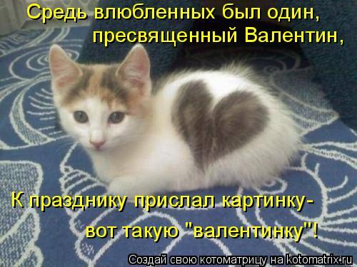 Котоматрица: Средь влюбленных был один, пресвященный Валентин, К празднику прислал картинку- вот такую ''валентинку''!
