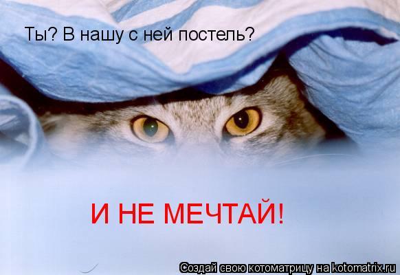 Котоматрица: Ты? В нашу с ней постель? И НЕ МЕЧТАЙ!