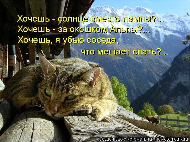 Котоматрица: Хочешь - солнце вместо лампы?... Хочешь - за окошком Альпы?... Хочешь, я убью соседа, что мешает спать?...