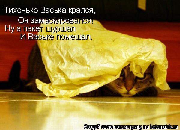 Котоматрица: Тихонько Васька крался, Он замаскировался! Ну а пакет шуршал И Ваське помешал.