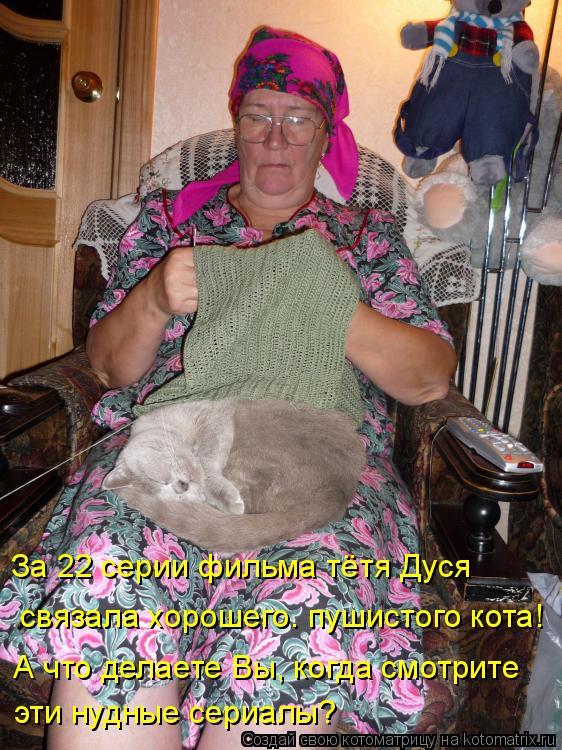 Картинки осень с котами