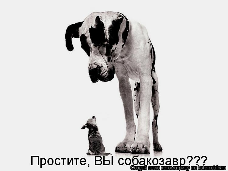 Простите, ВЫ собакозавр???