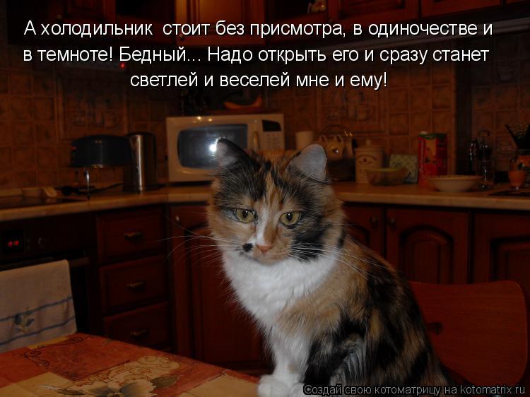 Котоматрица: А холодильник  стоит без присмотра, в одиночестве и в темноте! Бедный... Надо открыть его и сразу станет светлей и веселей мне и ему!