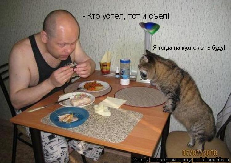 Котоматрица: - Кто успел, тот и съел! - Я тогда на кухне жить буду!